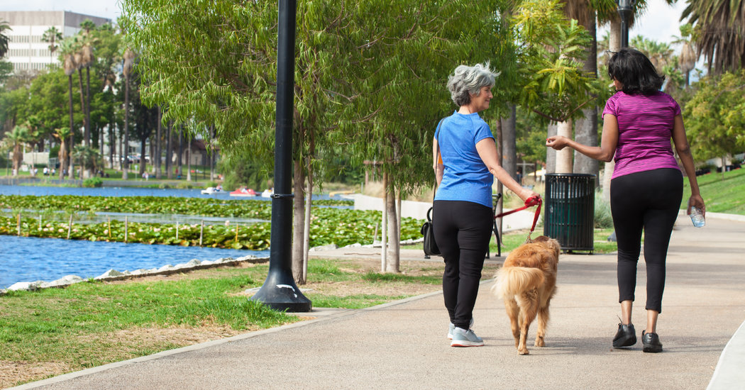 Even One Extra Walk a Day May Make a Big Difference